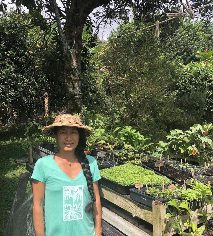Vendor Spotlight – Honua Ho'onani Nursery