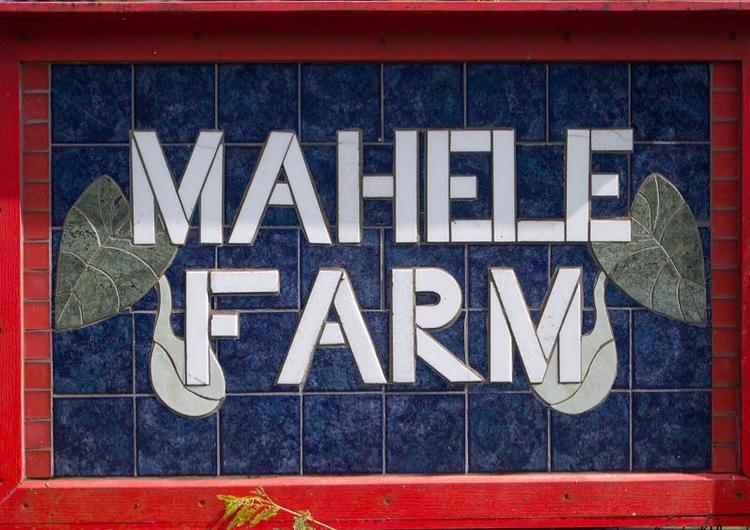 Vendor Spotlight – Mahele Farm