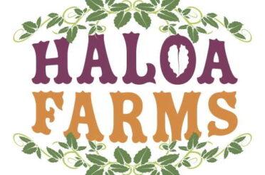 Vendor Spotlight: Haloa Farms